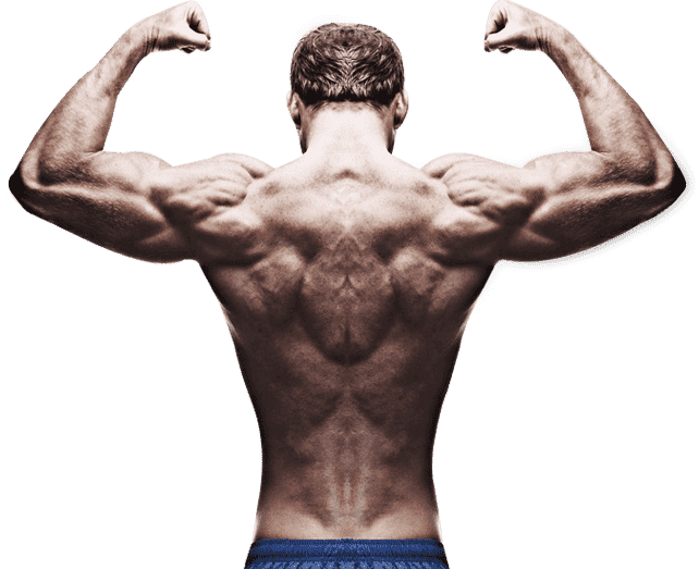 Testosterone and bodybuilding